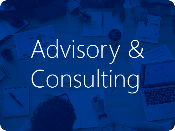 Advisory & Consulting Services